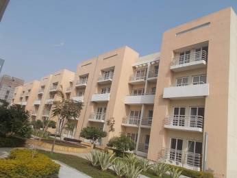 1045 sqft, 2 bhk Apartment in BPTP Park Floors II Sector 76, Faridabad at Rs. 31.0000 Lacs