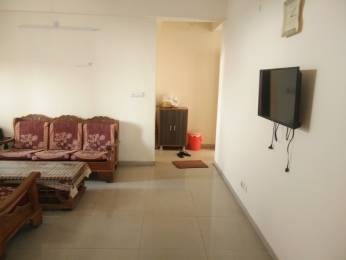 1576 sqft, 3 bhk Apartment in Omaxe Heights Sector 86, Faridabad at Rs. 17000