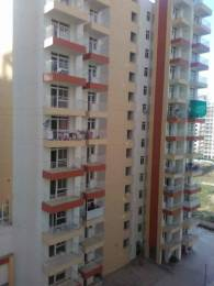 1710 sqft, 3 bhk Apartment in KLJ Greens Sector 77, Faridabad at Rs. 45.0000 Lacs