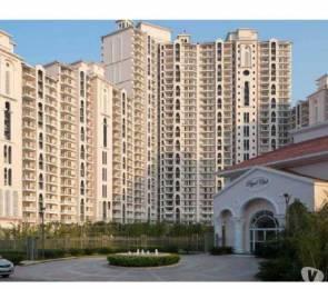 1713 sqft, 3 bhk Apartment in DLF Regal Gardens Sector 90, Gurgaon at Rs. 21000