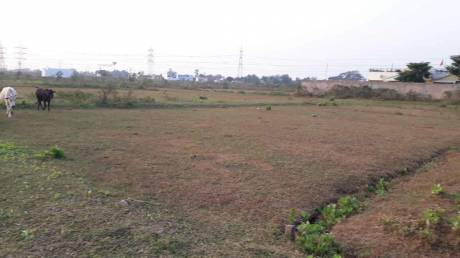 3000 sqft, Plot in Builder Project Charoda, Durg at Rs. 18.0000 Lacs