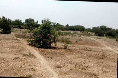 4675 sqft, Plot in Builder Project RS Puram, Coimbatore at Rs. 6.6000 Cr