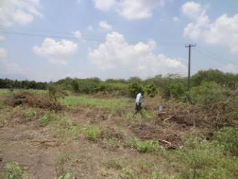 9250 sqft, Plot in Builder Project RS Puram, Coimbatore at Rs. 13.7500 Cr
