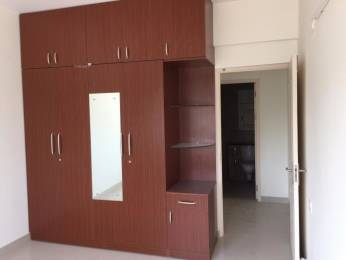 1650 sqft, 3 bhk Apartment in Builder Project Indira Nagar, Bangalore at Rs. 65000