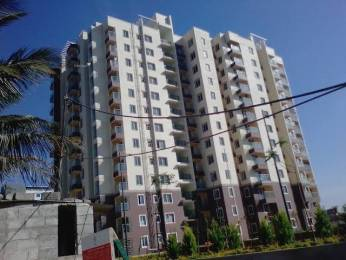645 sqft, 1 bhk Apartment in Confident Leo Sarjapur Road Wipro To Railway Crossing, Bangalore at Rs. 45.0000 Lacs