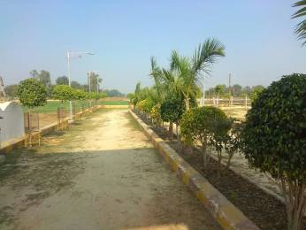 1000 sqft, Plot in Builder Tirupati Residency at deva road Deva Road, Lucknow at Rs. 7.5000 Lacs