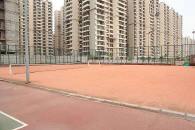 1175 sqft, 2 bhk Apartment in Builder Project Gaur City 1, Greater Noida at Rs. 45.8300 Lacs