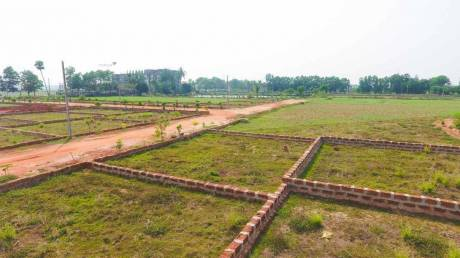 1200 sqft, Plot in Builder OM VIHAR Uttara, Bhubaneswar at Rs. 7.8000 Lacs