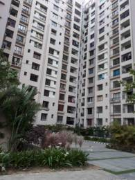 1450 sqft, 3 bhk Apartment in Mani Tirumala Raghunathpur, Bhubaneswar at Rs. 72.0000 Lacs
