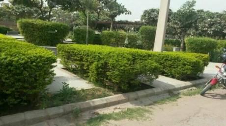 1500 sqft, 3 bhk Apartment in HUDA Plot Sector 46 Sector 46, Gurgaon at Rs. 1.5000 Cr