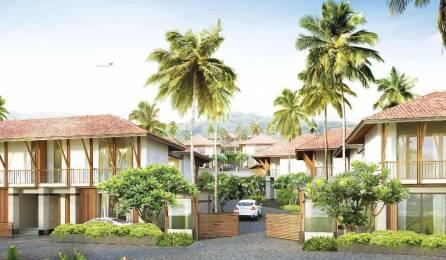 3556 sqft, 3 bhk Villa in Builder resort type independent villas Nerul, Goa at Rs. 4.2600 Cr