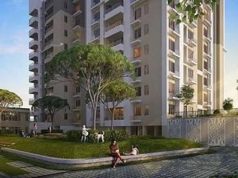 1121 sqft, 2 bhk Apartment in Builder Serinity Pradhan Nagar, Siliguri at Rs. 45.9610 Lacs