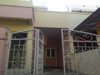 1200 sqft, 3 bhk IndependentHouse in Builder old minaal Ayodhya By Pass, Bhopal at Rs. 10000