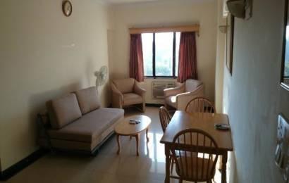 610 sqft, 1 bhk Apartment in  Maya Garden City Nagla, Zirakpur at Rs. 12000