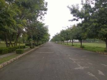 1350 sqft, Plot in Builder Project Sector 114 Mohali, Mohali at Rs. 25.0000 Lacs