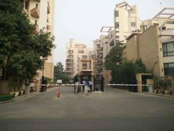 3300 sqft, 3 bhk Apartment in Builder The Laburnum Sushant Lok 1gurgaon Tijara, Bhiwadi at Rs. 80000