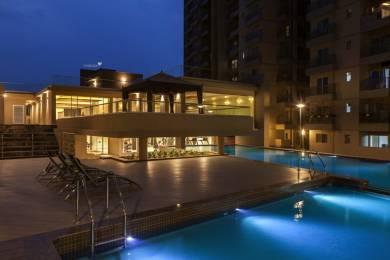 1270 sqft, 2 bhk Apartment in Goyal Orchid Lakeview Bellandur, Bangalore at Rs. 34000