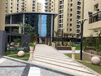 630 sqft, 1 bhk Apartment in Anukampa Platina Sanganer, Jaipur at Rs. 26.5000 Lacs