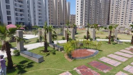 1370 sqft, 2 bhk Apartment in Builder SBP Housing Park Dera Bassi, Chandigarh at Rs. 37.0000 Lacs