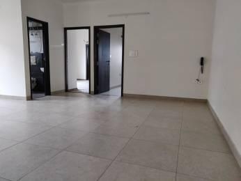 1650 sqft, 3 bhk Apartment in Builder Project Tilak Nagar, Jaipur at Rs. 1.2200 Cr