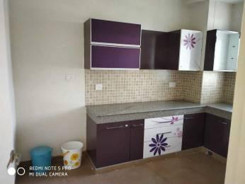 1800 sqft, 3 bhk Apartment in Ireo Oyster Villas Gurdev Nagar, Ludhiana at Rs. 20000