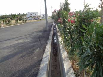 1750 sqft, Plot in Builder Crown City Kovilpalayam, Coimbatore at Rs. 24.1000 Lacs