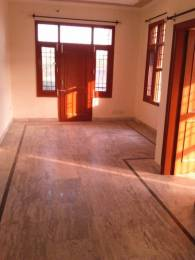 1400 sqft, 3 bhk BuilderFloor in Builder Project sector 71, Mohali at Rs. 25000