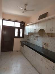 1500 sqft, 3 bhk BuilderFloor in Builder Project sector 71, Mohali at Rs. 30000
