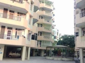 1600 sqft, 3 bhk Apartment in Builder Group Housing Society Complex Sector 20, Panchkula at Rs. 16000