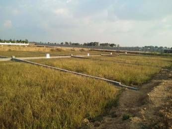 1200 sqft, Plot in Builder GOLF GREENS Kamal Vihar, Raipur at Rs. 14.2900 Lacs