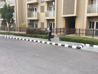 1330 sqft, 2 bhk Apartment in Paras Tierea Sector 137, Noida at Rs. 19000