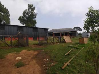 1600 sqft, Plot in Builder pristine valley Bengalmattam, Ooty at Rs. 6.6000 Lacs