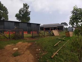 1700 sqft, Plot in Builder Project Bengalmattam, Ooty at Rs. 6.0000 Lacs