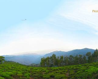 1900 sqft, Plot in Builder Project Bengalmattam, Ooty at Rs. 7.5000 Lacs