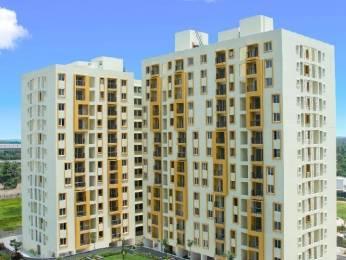 1152 sqft, 2 bhk Apartment in TATA New Haven Ribbon Walk Moolacheri, Chennai at Rs. 49.0000 Lacs