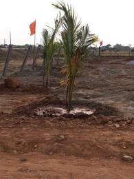 5400 sqft, Plot in Builder Sri Rigveda Farm Lands Papanaidupet Road, Tirupati at Rs. 18.0000 Lacs