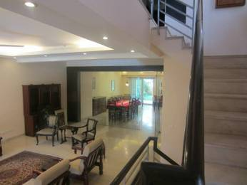 4900 sqft, 5 bhk Villa in Emaar The Palm Springs Villa Sector 54, Gurgaon at Rs. 2.5000 Lacs