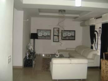 2397 sqft, 4 bhk Apartment in Hanumant Bollywood Heights 2 Panchkula Sec 20, Chandigarh at Rs. 75.0000 Lacs