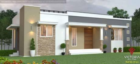 1200 sqft, 3 bhk Villa in Builder low budget vt villa Thathamangalam Chittur Nattukal Highway, Palakkad at Rs. 21.0000 Lacs