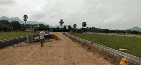 1350 sqft, Plot in Builder Project Boyapalem Phirangipuram, Guntur at Rs. 8.2500 Lacs