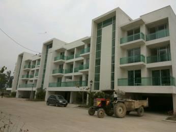 1606 sqft, 3 bhk BuilderFloor in Omaxe Ambrosia Floors Mullanpur, Mohali at Rs. 59.0000 Lacs
