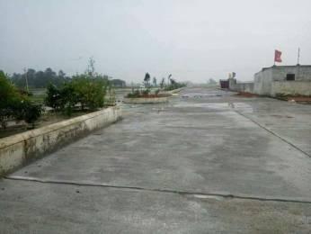 1000 sqft, Plot in Builder Project Gosainganj, Lucknow at Rs. 21.5000 Lacs