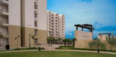 1088 sqft, 2 bhk Apartment in MR Shalimar City Pasaunda, Ghaziabad at Rs. 34.0000 Lacs