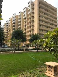 1430 sqft, 3 bhk Apartment in MR Proview Delhi 99 Indraprastha Yojna, Ghaziabad at Rs. 34.0000 Lacs