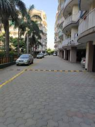 1675 sqft, 3 bhk Apartment in Builder trishla plus homes PEER MUCHALLA ADJOING SEC 20 PANCHKULA, Chandigarh at Rs. 40.0000 Lacs