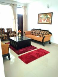 1800 sqft, 3 bhk Apartment in Builder Victoria Heights PEER MUCHALLA ADJOING SEC 20 PANCHKULA, Chandigarh at Rs. 62.0000 Lacs