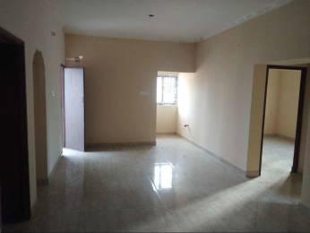 1300 sqft, 3 bhk Apartment in Builder Project Thiruvanmiyur, Chennai at Rs. 1.3000 Cr