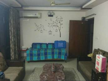1165 sqft, 2 bhk Apartment in Omaxe Heights Sector 86, Faridabad at Rs. 20000