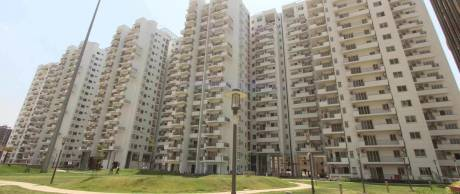 1200 sqft, 2 bhk Apartment in Emaar Palm Drive Sector 66, Gurgaon at Rs. 50000