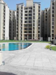 2036 sqft, 4 bhk Apartment in NK Savitry Towers Sector 91 Mohali, Mohali at Rs. 80.0000 Lacs